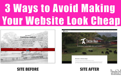 3 Ways to Avoid Making Your Website Look Cheap