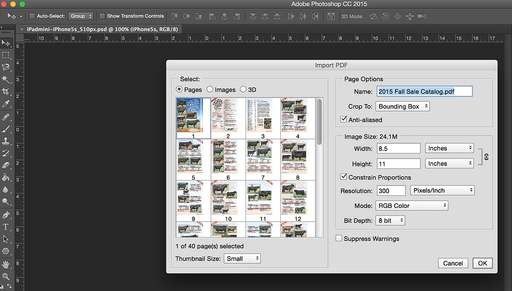 Extracting Images from PDF