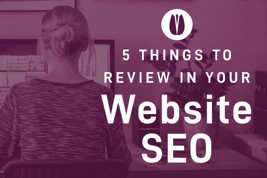5 things to review in your website SEO