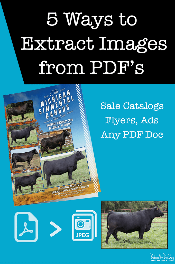 5 ways to extract images from PDFs