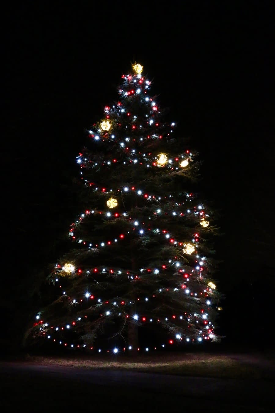professional home christmas lighting grand rapids michigan